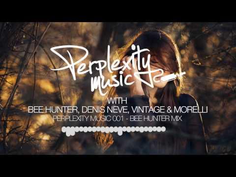 Perplexity Music 001 - Bee Hunter Mix [16.01.2015] [THS89]