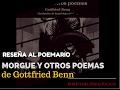 Video reseña de Daniel Rojas Pachas en torno a Gottfried Benn y el libro Morgue y otros poemas