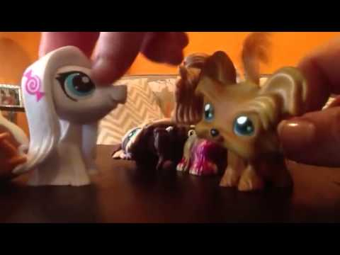 Lps Yorkie Family Part 2 Youtube