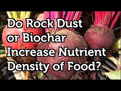 Do Rock Dust or Biochar Work Increase the Nutrient Density of Food? 2015 Trial Result