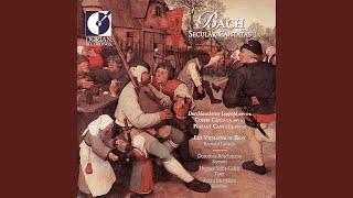 "Schweigt stille, plaudert nicht, BWV 211, ""Coffee Cantata"": Recitative: Du boses Kind, du loses..."