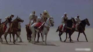 جوها هلها - محمد نصر المقرحي HD 2017