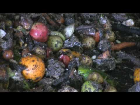 Turn organic waste into valuable biogas and nutrient rich compost (HD)