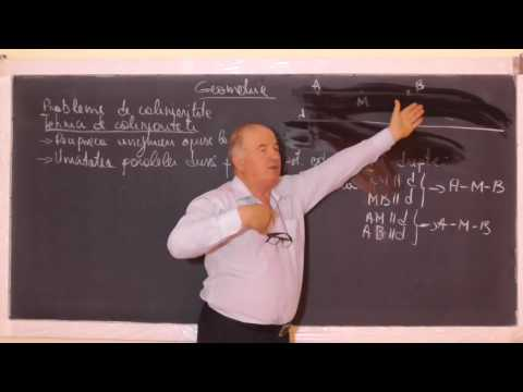 1/2 1076 Criterii coliniaritate in plan Th Menelaus Problema coliniaritate in spatiu Clasa 8