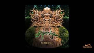 Shpongle - Celestial Intoxication