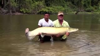 10 Шокирующих Моментов Во Время Рыбалки Снятых На Камеру