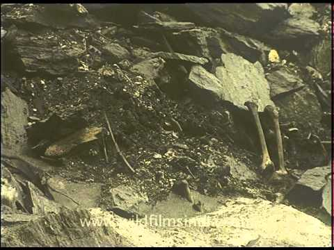 Roopkund's bones in the shadow of Nanda Devi