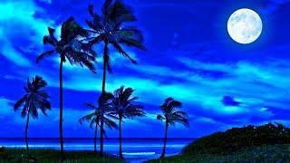 Relaxing Sleep Music 24/7, Calm Music, Meditation Music, Yoga, Deep Sleep Music, Study Music, Sleep