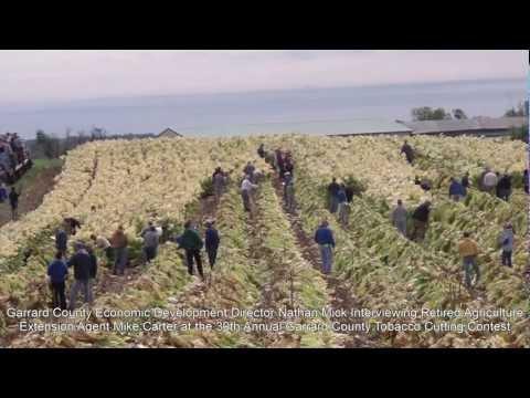 30th Annual Garrard County Tobacco Cutting Contest: Garrard County, Kentucky