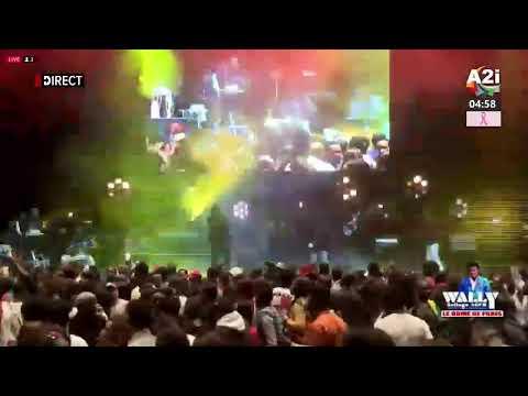 Concert du 26 Octobre 2019 de WALLY SECK au DOME DE PARIS