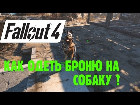 Как надеть броню на собаку в fallout 4