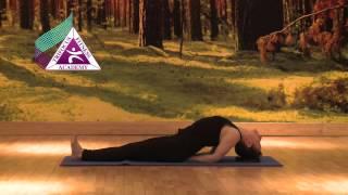 Yoga - Matsyasana (Fish Pose)