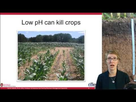 Soil Acidity And Liming, Ag Nutrient Management