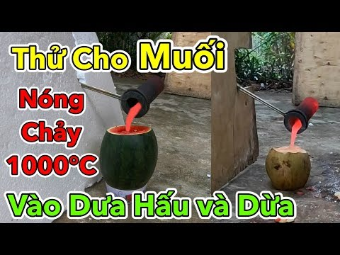 Lâm Vlog - Thử Cho MUỐI Nóng Chảy 1000 độ C Vào Trong Quả Dưa Hấu và Quả Dừa   1000 Degree SALT