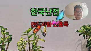 한국난전시회