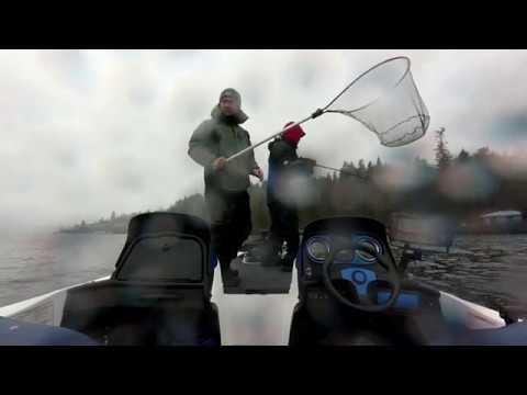 Lake Washington Smallmouth 02-03-18