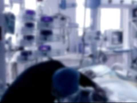 Kidney trafficking gang busted in E China