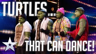 Unforgettable Audition: URBAN TURTLES BUST A MOVE!  | Britain's Got Talent 2020