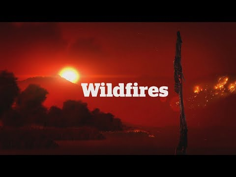 B.C. Wildfires: CBC Vancouver News special coverage (July 11, 2017)