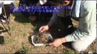 科学映像館 土壌の生きもの調査 林鷹央先生 石井慶 検索動画 15
