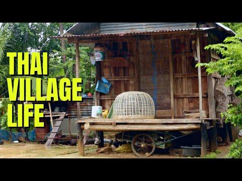 Village life in Phimai Thailand❤️️