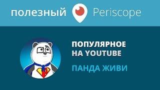 Популярные темы на ютубе / Панда