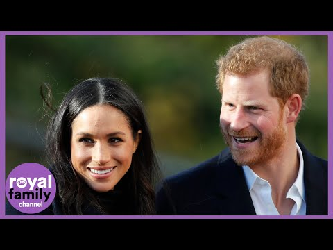 Harry and Meghan Give Up Royal Titles: Their New Roles Explained