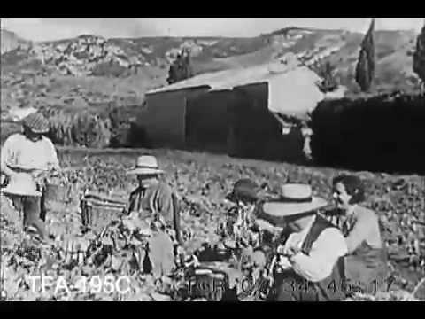 En Haute Provence, 1958