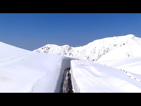 立山黒部アルペンルート 雪の大谷