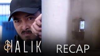 Gambar cover Paeng's revenge on Mauro   Halik Recap