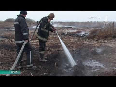 Телеканал Новий Чернігів: На Чернігівщині горіли торфовища   Телеканал Новий Чернігів