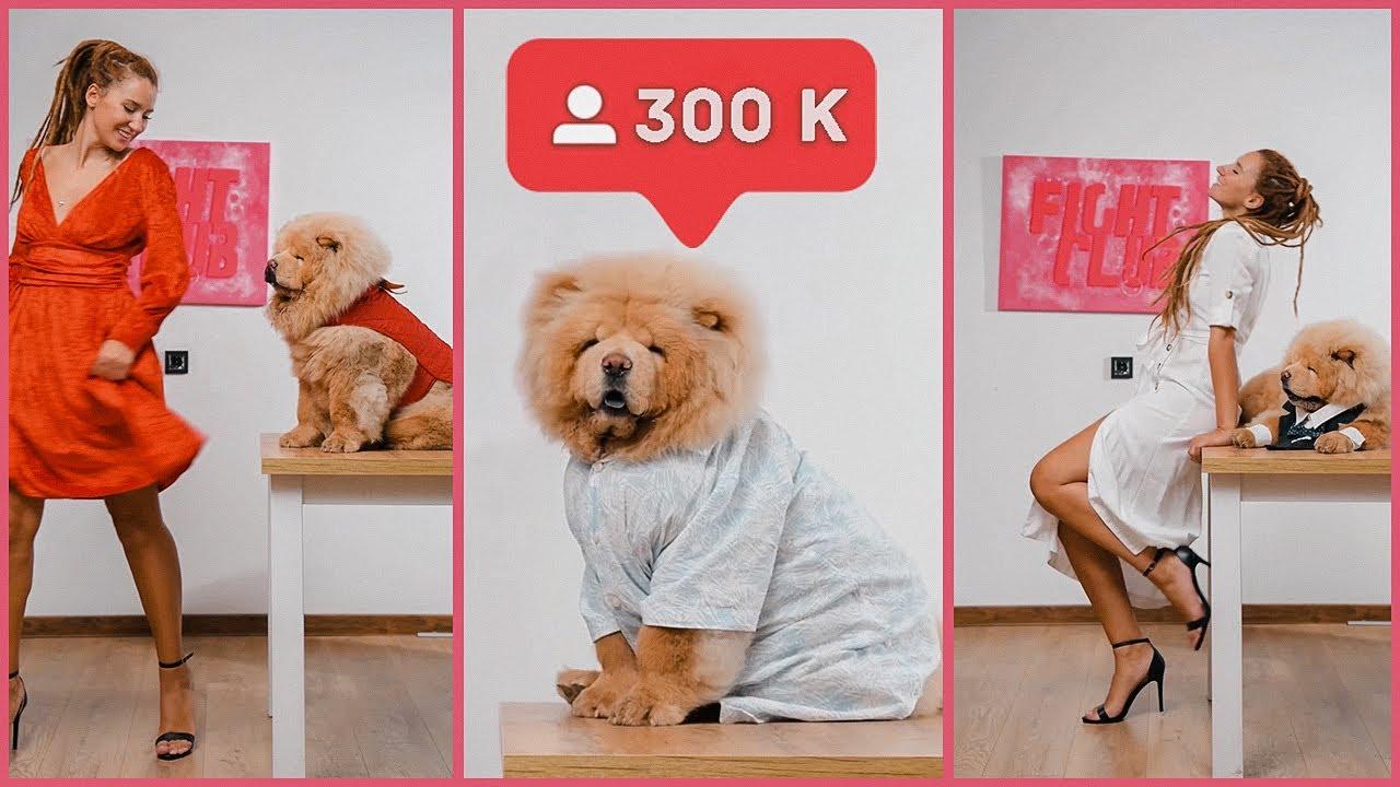 300 000 გამომწერი TikTok – ზე