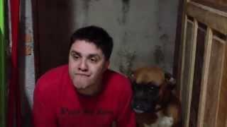 Just Dogs - Apenas Cães