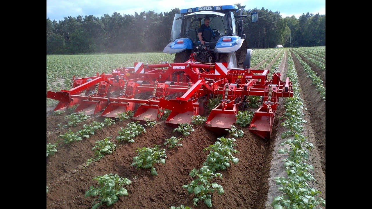 GRIMME GH 6 Eco Ridging Hiller YouTube