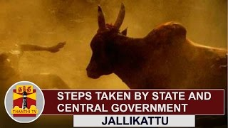 JALLIKATTU | Steps taken by State and Central Government | Thanthi TV