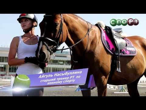 СпоРТ: Это Конкур, детка! Как научиться кататься на лошади
