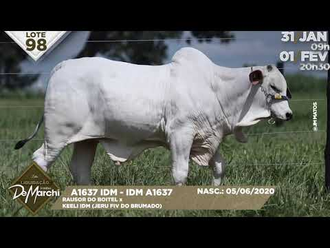 LOTE 98
