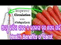 10 Amazing Health Benefits Of Carrots by Odia Fitness