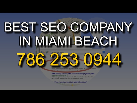 How To Find The Best SEO Company In Miami Beach   SEO Marketing Services