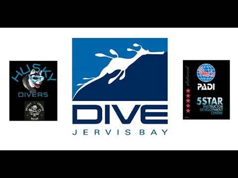 Video Of The Week | Introduction to Dive Jervis Bay