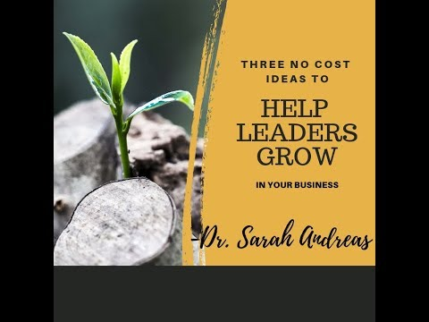 3 No Cost Ideas to help leaders grow