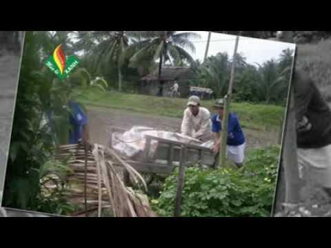 Mùa Hè Xanh- Mỹ Cẩm- Càng Long- Trà Vinh (Đại Học Cửu Long- Mekong University)