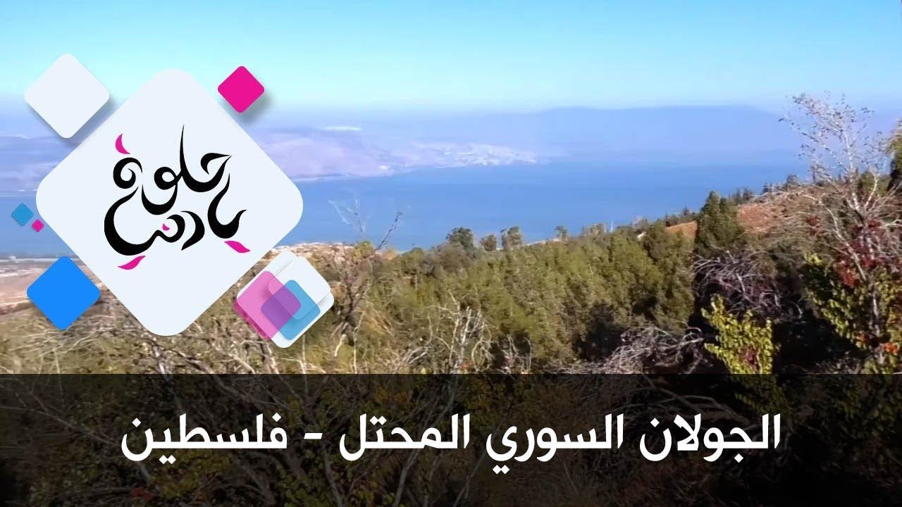 الجولان السوري المحتل - فلسطين - حلوة يا دنيا