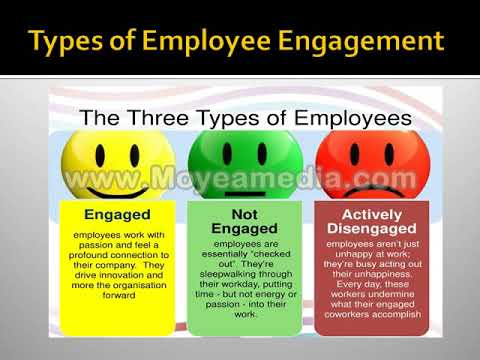 what is Employee Engagement ?, (Hindi), definition, types, importance