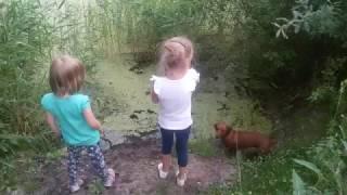 Ловля лягушек
