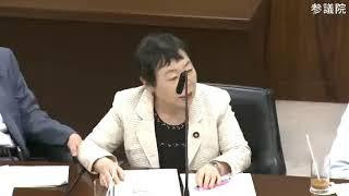 相原 久美子(立憲民主党・民友会) 内閣委員会 参議院 2018 06 19