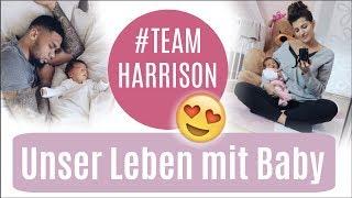 Unser Leben zu dritt ♡ Q&A ♡ Team Harrison