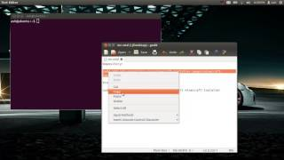 Install Minecraft on Ubuntu 12.04 LTS+