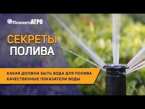Секреты полива 💧 Какая должна быть вода 💦 Как поливать  растения