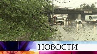 Жителей Москвы иЦентральной России предупреждают осильных порывах ветра игрозе, возможен град.